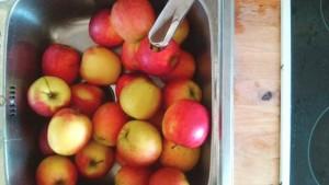 Die Äpfel.